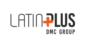 Latin plus DMC Group logo